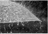 هواشناسی ایران ۹۸/۱۰/۲۱|بارش برف و باران تا چهارشنبه در برخی استانها