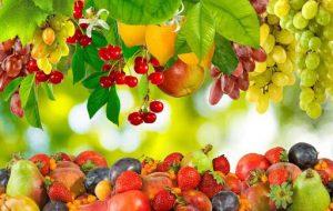 کاهش ۳۰ درصدی قیمت میوه های نوبرانه در یاسوج