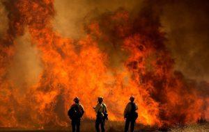 آتشسوزی مهیب در کالیفرنیا | علت این آتش سوزی ها چیست ؟